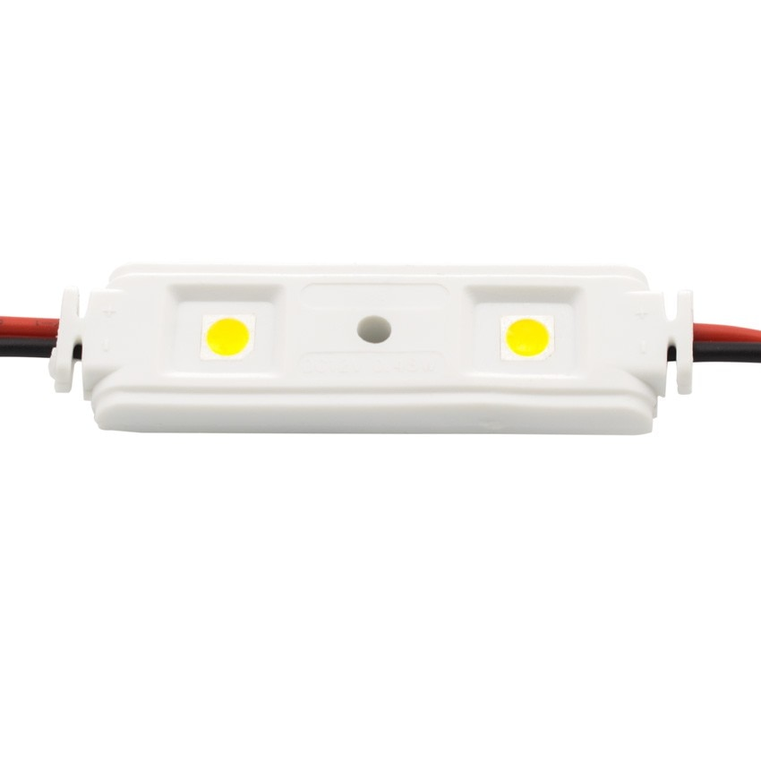 Chain of 20x 0.48W 12V SMD5050 Linear LED Modules (x2) IP65